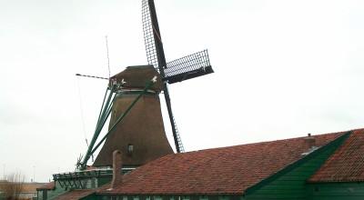 Restauratie van de droogschuur van papiermolen De Schoolmeester in Westzaan